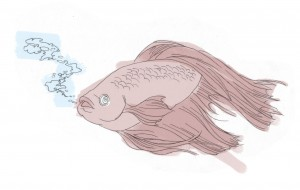 Glixman-Fishes1
